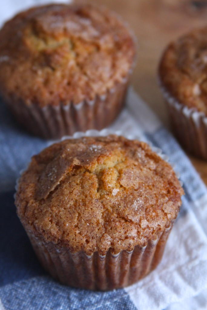 Spiced Applesauce Muffins